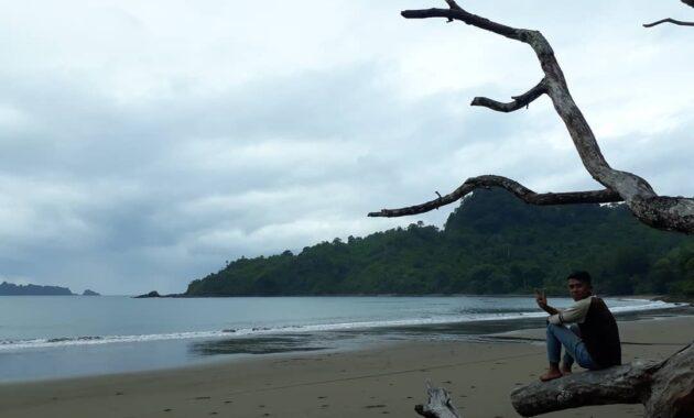 10 Foto Pantai Bandealit Jember, Harga Tiket Masuk Misteri ...