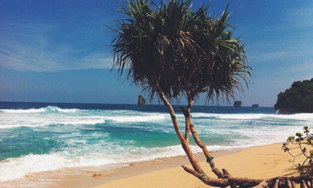 10 Gambar Pantai Goa Cina Malang 2020 Harga Tiket Masuk Rute Jalan Menuju Lokasi Wisata Jejakpiknik Com