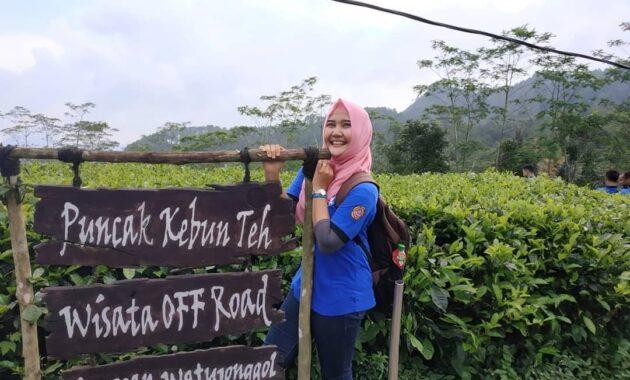 10 Foto Kebun Teh Nglinggo Kulon Progo Harga Tiket Masuk Samigaluh Jogja Jejakpiknik Com
