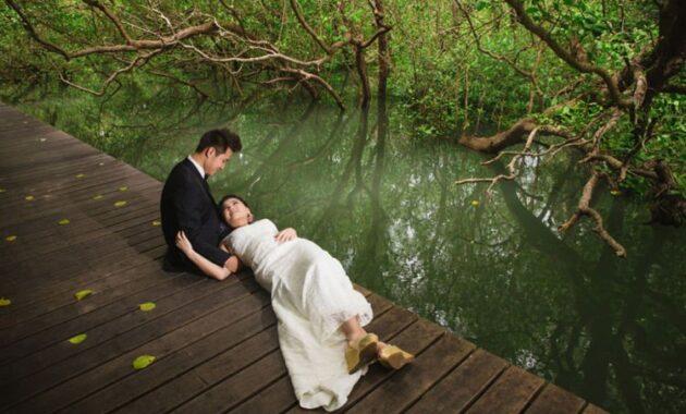 10 Gambar Hutan Mangrove Pik 2021 Harga Tiket Masuk Wisata