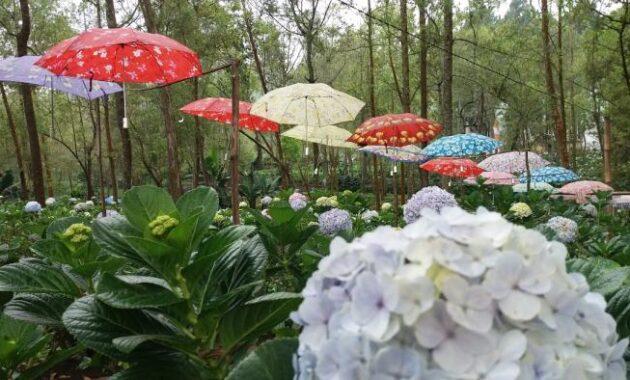 10 Spot Foto Coban Talun Batu Malang Harga Tiket Masuk Wisata