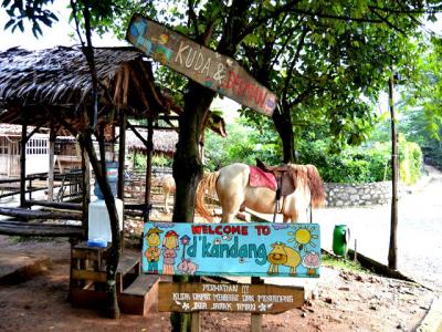 10 Gambar D Kandang Amazing Farm Depok, Harga Tiket Masuk, Lokasi Alamat, Jam Buka Tutup + Nomer Telefon