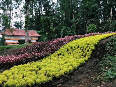 Perpaduan Warna yang Cantik | Foto: titissoeparno.blogspot.co.id