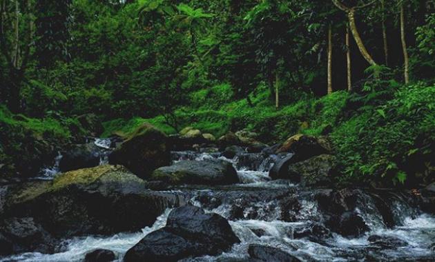 10 Gambar Wisata Alam Capolaga Subang Tiket Masuk Lokasi