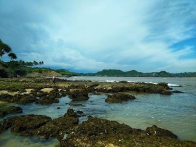 10 Gambar Pantai Karapyak Ciamis Tiket Masuk Penginapan
