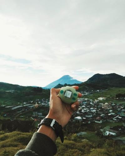 Ngapain Bawa Tamagochi? | Foto: Instagram @aris_tyan