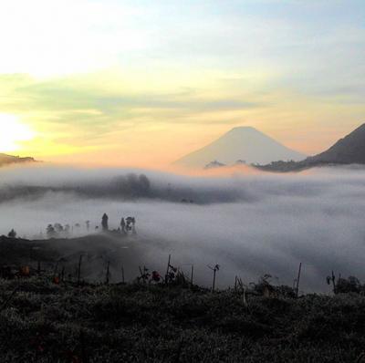 Ketika Kabut Menutupi | Foto: Instagram @meno_dieng_prau