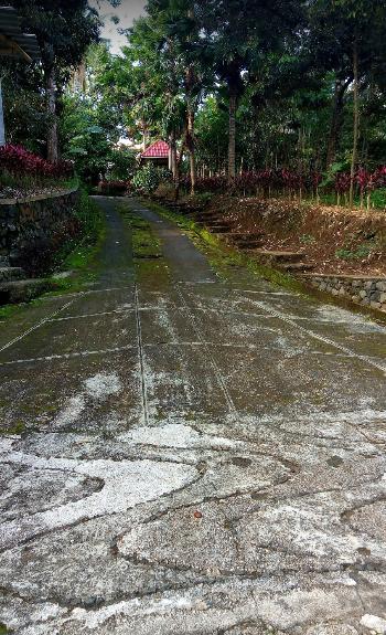Jalan Setapak | Foto: google.com Take by Abdul Rochim