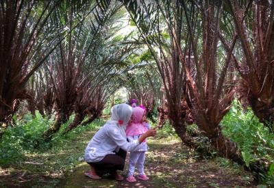 Mengenalkan Anak dengan Tanaman | Foto: google.com Take by Abdul Rochim