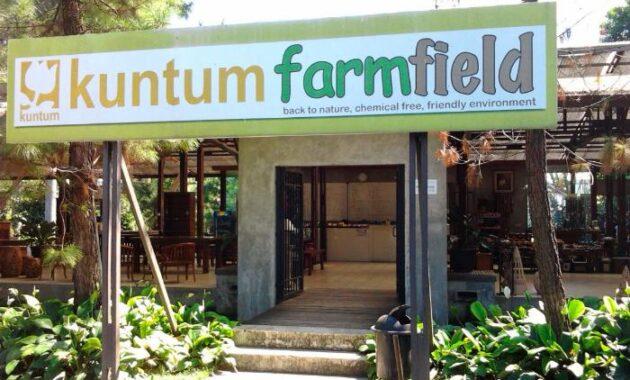 Hasil gambar untuk Kuntum Farm Field