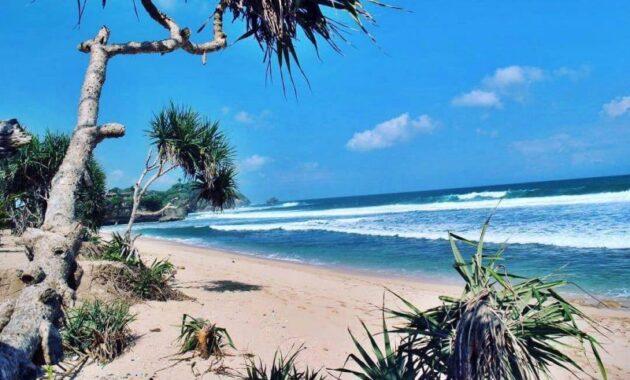 10 Pantai Di Wonosari Gunung Kidul Yogyakarta Yang Paling Dekat Dengan Jogja Aman Untuk Anak Masih Sepi Bisa Snorkeling Dan Camping Ombaknya Kecil Jejakpiknik Com