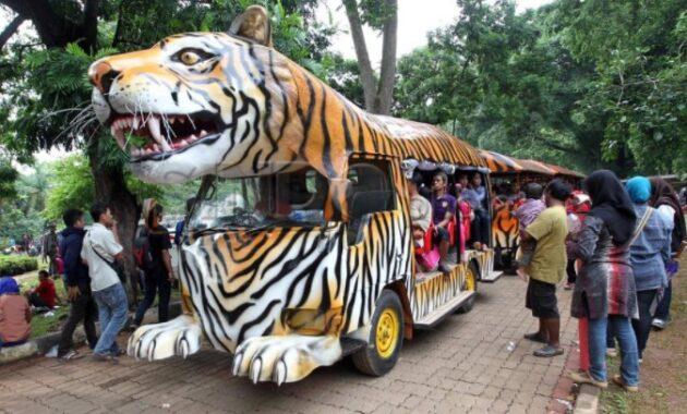 Inilah 10 Hal Menarik Di Kebun Binatang Ragunan Jakarta Yang Membuat Liburan Berkesan Jejakpiknik Com
