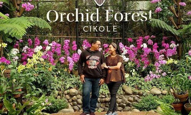 10 Spto Foto Di Orchid Forest Cikole Lembang Harga Tiket Masuk 2019
