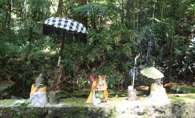 Rowo Bayu 2 630x380 - Kisah Mistis Era 80-an di Lokasi yang Diduga Tempat 'KKN Desa Penari'